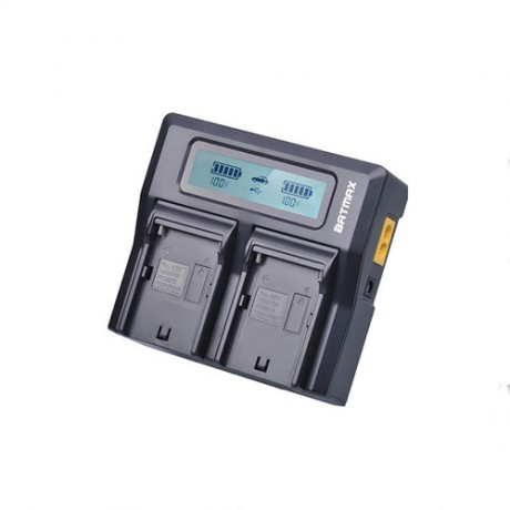 Dual Channel Charger Batmax NP-F for rent