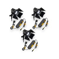 Dedolight DLH4 150W kit 3